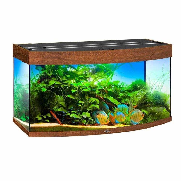 Параллелепипедные аквариумы картинка